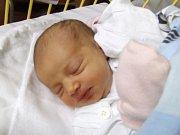 Veronika Mintělová se narodila 18. listopadu, vážila 2,81 kilogramů a měřila 46 centimetrů. Rodiče Filip a Zuzana z Píště jí do života přejí hodně zdraví a štěstí. Verunka už doma dělá radost také bráškovi Štěpánovi.