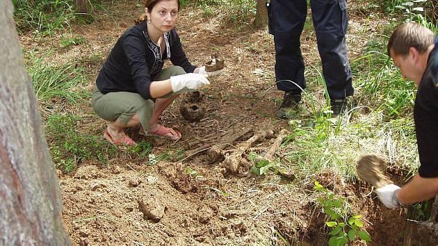 Nálezy pozůstatků německých vojáků u Bolatic nejsou jediné, kdy bylo na Opavsku něco podobného objeveno. Objevují se třeba i pozůstatky sovětských vojáků i pozůstatky, které už nelze identifikovat.