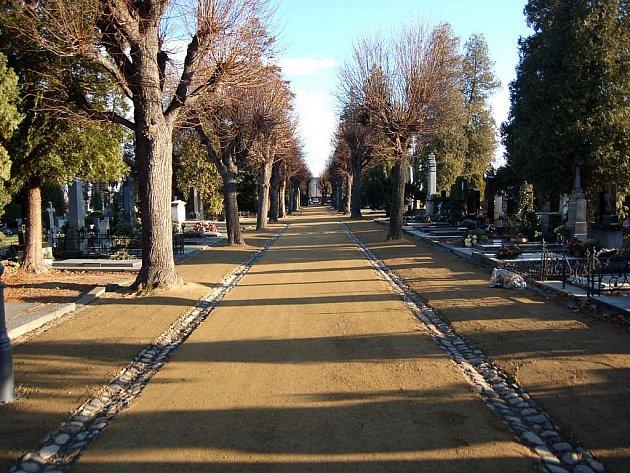 Městský hřbitov v Opavě. Ilustrační foto.