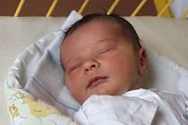 Jáchym Komárek se narodil 12. října, vážil 4,02 kilogramů a měřil 52 centimetrů. Rodiče Anna a František z Rohova mu do života přejí zdraví a štěstí. Na brášku doma čekají sourozenci Anastázie a Bartoloměj.