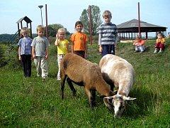 Dětský ranč v Hlučíně. Ilustrační foto.