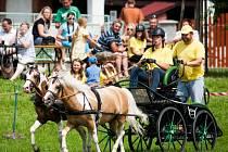 O uplynulém víkendu se v Kobeřicích konal druhý ročník Vozatajského poháru Českého sportovního pony.