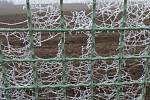 Mrazivé pavučinky na plotě