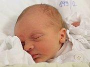 Matěj Stanke se narodil 23. října 2018, vážil 2,90 kilogramu a měřil 49 centimetrů. Rodiče Tereza a Petr z Opavy svému prvorozenému synovi přejí, aby byl zdravý a šťastný.