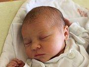 Alice Kučmerčíková se narodila 28. června, vážila 3,13 kilogramů a měřila 49 centimetrů. Rodiče Markéta a Aleš z Komárova přejí své prvorozené dceři do života mnoho zdraví, štěstí a lásky.