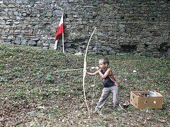 Den hradu Vikštejna se bude konat už počtvrté. Všechny minulé ročníky přitom byly nadmíru povedené a totéž se dá očekávat i v sobotu 30. srpna. Své si tady najdou i celé rodiny s dětmi.