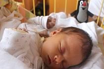 """Adéla Pastrňáková se narodila 31. srpna, vážila 3,09 kg a měřila 47 cm. """"Zdravíčko a štěstíčko,"""" popřáli svému prvnímu miminku do života rodiče Radka a David z Opavy."""