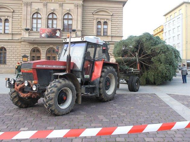 Opava má od úterka svůj vánoční strom. Tentokrát zdobí Horním náměstí a je původem až ze Štemplovce.