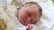 Laura Rolinc se narodila 13. září, vážila 3,10 kilogramů a měřila 47 centimetrů. Rodiče Lucie a Martin z Klokočova u Vítkova budou dělat maximum pro to, aby byla jejich prvorozená dcera v životě zdravá, šťastná a spokojená.
