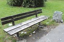 Tak tady byste si asi nesedli. Lavička v parku Joy Adamsonové měla patrně před nedávnem návštěvníky, kterým pořádek nic neříká.