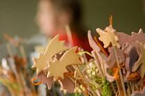 Mladecká základní škola se před tímto víkendem intenzivně věnovala Vánoční besídce, která letos zaznamenala své třetí pokračování. Program besídky měl celkově deset bodů a bylo se skutečně na co koukat.