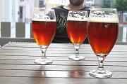 Pivní stezka se v Opavě setkala s úspěchem.