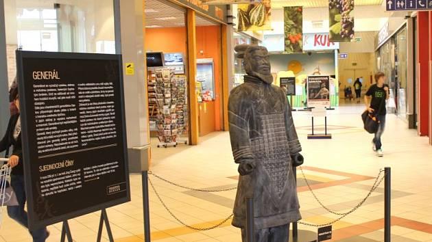 Válečníci z terakoty, kteří jsou k vidění od víkendu v rámci unikátní výstavy v prostorách pasáže opavského obchodního centra Silesia, se překvapivě velkému zájmu lidí netěšili.