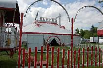 Cirkus Bernes