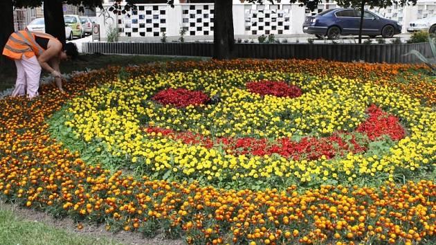 Vysmátý žlutý smajlík v záhonu u budovy Slezské univerzity v Olbrichově ulici nese vznešený název Olbrichova slza. Tento pracovní název vymysleli zaměstnanci zdejších technických služeb, a to kvůli tvaru záhonu a jeho umístění.