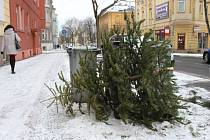 LOŇSKÉ Vánoce patří definitivně minulosti. Jejich poslední mementa v těchto dnech můžete vidět u popelnic a kontejnerů, kam se odkládají vánoční stromky.