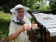 Včelaři už nemusejí úly hlásit na úřadech, ale zadávají je do veřejného registru půdy na internetu.