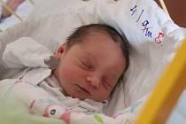 Richard Škrobánek se narodil 1. ledna 2020, vážil 3,46 kilogramu a měřil 50 centimetrů. Rodiče Petra a Pavel z Opavy přejí svému prvorozenému synovi do života hlavně sílu a ať se mu líbí na světě.