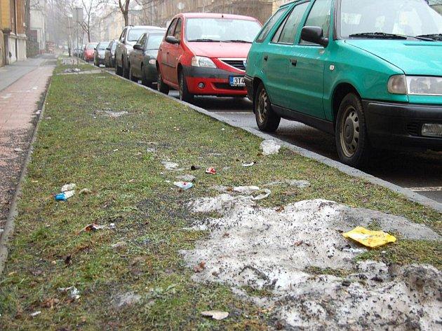 """Sáčky, PET lahve, papírky, nedopalky a hlavně psí exkrementy. To všechno teď """"zdobí"""" ulice Opavy."""