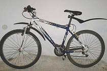 Jedním z ukradených předmětů bylo i toto kolo, které policisté u muže po zadržení našli.
