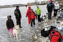 Jezero se proměnilo v obrovskou ledovou plochu, kterou využívají milovníci hokeje i bruslení v přírodě.