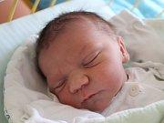 Adam Vajda se narodil 8. února 2018, vážil 3,58 kilogramu a měřil 52 centimetrů. Rodiče Petra a Vojtěch z Opavy přejí svému prvorozenému synovi, aby byl v životě především zdravý a šťastný.