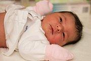 Agáta Hobžová se narodila 31. října 2018, vážila 4,35 kilogramu a měřila 51 centimetrů. Maminka Barbora a tatínek Petr ti Agátko přejí hodně krásných chvil, zážitků a milujících lidí ve tvém životě.