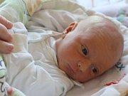 Lucie Kmečová se narodila 17. prosince, vážila 3,18 kilogramů a měřila 51 centimetrů. Rodiče Hana a Libor z Opavy přejí své prvorozené dceři do života zdraví, lásku a aby dělala všem doma radost.