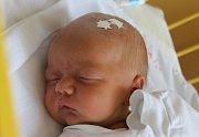 Štěpán Křempek se narodil 9. srpna 2016, vážil 2,92 kilogramů a měřil 48 centimetrů. Rodiče Jana a David z Opavy mu do života přejí hlavně zdraví a štěstí. Na Štěpánka už doma čeká brácha Sebastian.