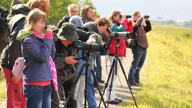 Účastníci vycházky mohou obdivovat zástupce ptačí říše.
