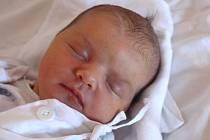 Elisabeth Koterbová se narodila 21. listopadu, vážila 3,62 kilogramu a měřila 51 centimetrů. Rodiče Hana a Marek z Dolního Benešova přejí své prvorozené dceři do života zdraví, štěstí a lásku.