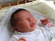 Andrea Vašková se narodila 26. června, vážila 3,89 kilogramů a měřila 52 centimetrů. Rodiče Kateřina a Marek z Opavy jí do života přejí zdraví a štěstí. Na sestřičku už doma čekají sourozenci Karolína a Pavla.