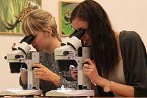 Studenti detailně zkoumali své úlovky.