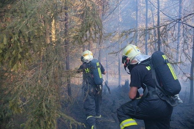 Zásah hasičů upožáru lesa na Opavsku, neděle 30.června 2019.