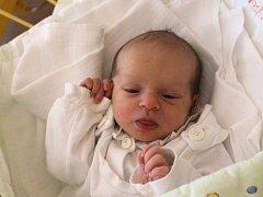 Natálie Polzerová se narodila 29. října, vážila 2,75 kg a měřila 50 cm. Rodiče Ingrid a Antonín z Lhotky u Vítkova svému prvnímu dítěti přejí do života hlavně štěstí a zdraví.