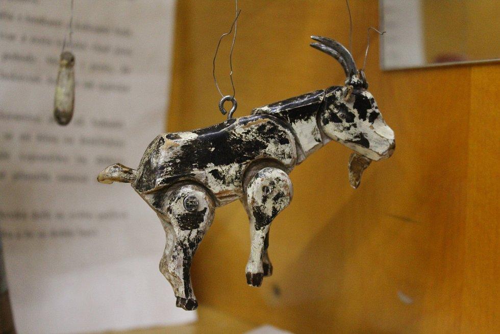 Nejstarší loutkou v muzeu, kterou vyrobil tatínek Zdeňka Petříka Stanislav, je koza.