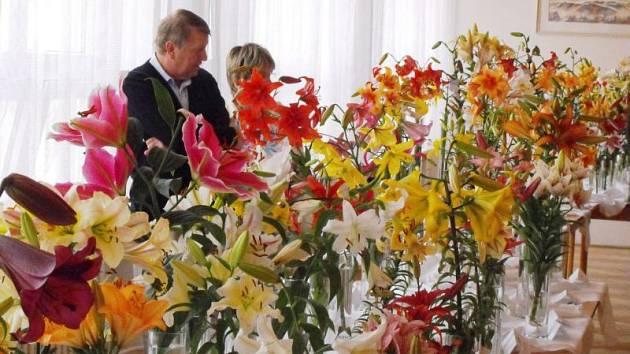 Pravidelné výstavy květin pořádá Iris již desítky let.