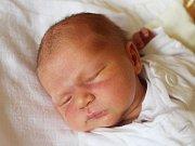 Viktorie Pelantová se narodila 22. ledna, vážila 3,56 kilogramu a měřila 50 centimetrů. Rodiče Blanka a Jiří z Dolních Životic jí přejí zdraví, spokojenost a aby měla život podle svých představ.