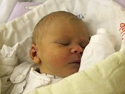 Vít Dobeš se narodil 27. listopadu, vážil 3,26 kilogramu a měřil 49 centimetrů. Rodiče Kateřina Dobešová a Michal Polášek z Hradce nad Moravicí přejí svému prvnímu miminku hlavně zdraví a ať si život užije plnými doušky.