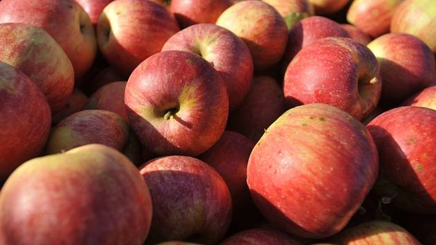 Jablka, švestky, hrušky, meruňky. Ovoce? Letos bída