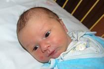 """Jakub Rycka se narodil 1. února, vážil 3,32 kg a měřil 52 cm. Do života mu rodiče přáli: """"Hlavně zdraví a ať se mu s námi líbí,"""" uvedla maminka Anna a tatínek Aleš ze Štěpánkovic."""