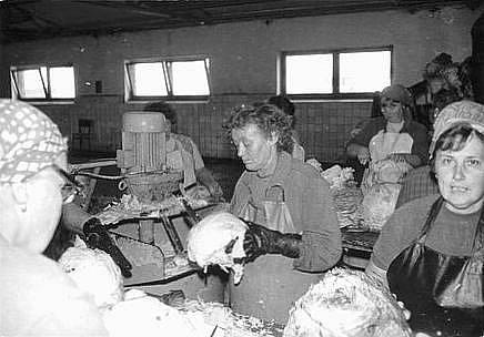 Zpracování otického zelí v místní zelárně na dobových fotografiích.