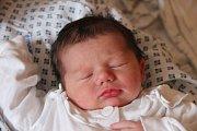 Maxim Petrovský se narodil 7. listopadu 2018, vážil 3,42 kilogramu a měřil 50 centimetrů. Rodiče Hana a Jan z Opavy – Jaktaře mu do života přejí zdraví, štěstí, spokojenost a ať se mu dobře daří. Na brášku už doma čeká sestřička Sára.