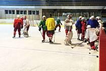 Opavští hokejisté v neděli odpoledne poprvé od konce sezony obuli brusle a vyjeli na led svého zimního stadionu.