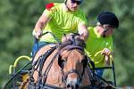 Milovníci koní si ve čtvrtek dali dostaveníčko v kravařském areálu Olšinky. Konalo se zde totiž šesté kolo a zároveň také finále Alkapetu, vozatajského poháru Svazu chovatelů českého sportovního pony.