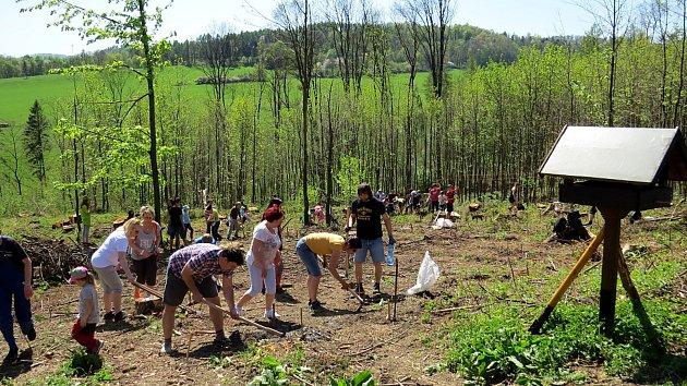 Do sázení stromků na Skalkách se zapojilo mnoho rodin s dětmi.