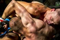 Uplynulá sobota v Kulturním domě Na Rybníčku v Opavě patřila bojovému sportu MMA. Konalo se zde totiž první kolo republikového šampionátu MMAA Arena Cup.