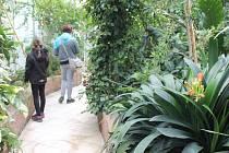 V Arboretu Nový Dvůr to o víkendu zavonělo jarem. Na návštěvníky čekaly nejen komentované prohlídky parku, ale se svým sborem vystoupil také Karel Kostera. O zábavu neměli nouzi ani nejmenší hosté arboreta.