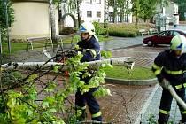 Hlučínští dobrovolní hasiči zasahovali v neděli večer na místním autobusovém nádraží, kde se vyvrátila vzrostlá bříza.