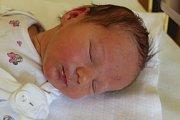 """Nikol Glogarová se narodila 30. dubna, vážila 3,35 kilogramu a měřila 50 centimetrů. Je to naše třetí miminko, doma už má dvě sestřičky. Do života přejeme miminku zdraví a štěstí,"""" řekli rodiče Radim a Šárka ze Skřipova."""